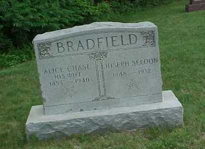 BRADFIELD, ALICE - Meigs County, Ohio | ALICE BRADFIELD - Ohio Gravestone Photos