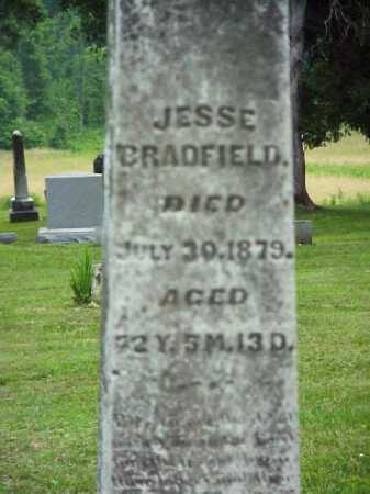 BRADFIELD, JESSE - Meigs County, Ohio | JESSE BRADFIELD - Ohio Gravestone Photos