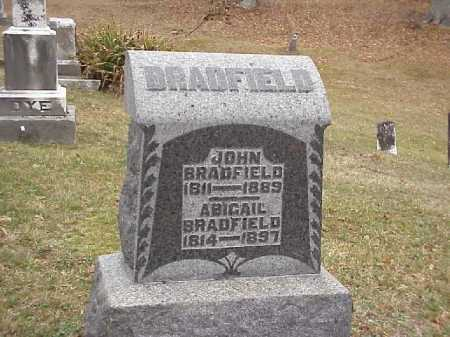 CHASE BRADFIELD, ABAGAIL - Meigs County, Ohio | ABAGAIL CHASE BRADFIELD - Ohio Gravestone Photos