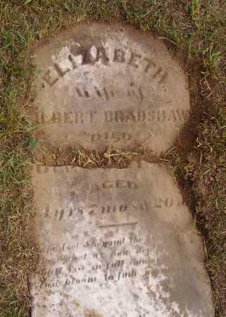 BRADSHAW, ELIZABETH - VIEW 2 - Meigs County, Ohio | ELIZABETH - VIEW 2 BRADSHAW - Ohio Gravestone Photos
