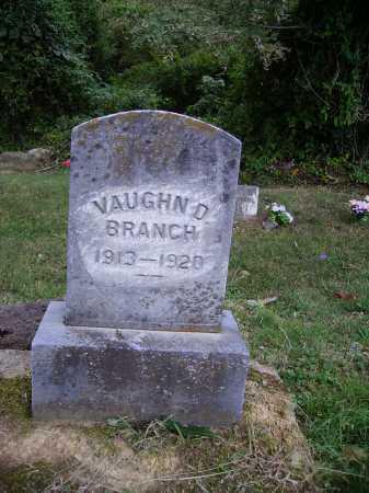 BRANCH, VAUGHN D. - Meigs County, Ohio | VAUGHN D. BRANCH - Ohio Gravestone Photos