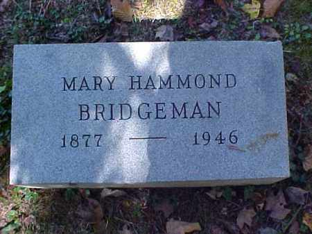 BRIDGEMAN, MARY - Meigs County, Ohio | MARY BRIDGEMAN - Ohio Gravestone Photos