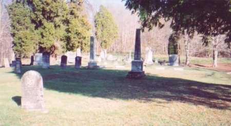 BRIGHT, CURTIS - Meigs County, Ohio | CURTIS BRIGHT - Ohio Gravestone Photos
