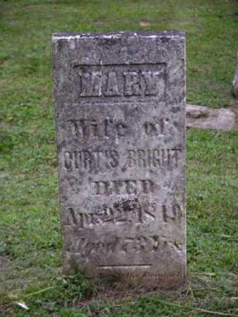BRIGHT, MARY - Meigs County, Ohio | MARY BRIGHT - Ohio Gravestone Photos