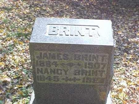 BRINT, NANCY - Meigs County, Ohio   NANCY BRINT - Ohio Gravestone Photos