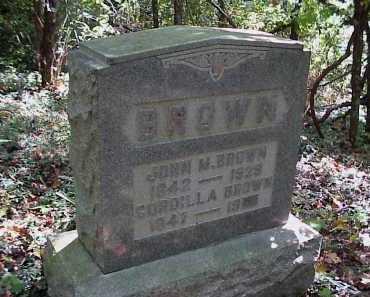 BROWN, JOHN M. - Meigs County, Ohio | JOHN M. BROWN - Ohio Gravestone Photos