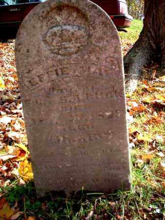 BUCK, EFFIE MAY - Meigs County, Ohio | EFFIE MAY BUCK - Ohio Gravestone Photos