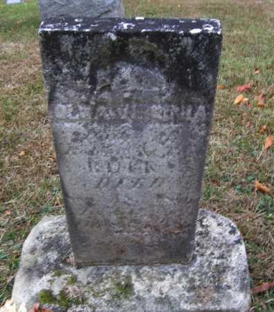 BUCK, OLA VIRGINIA - Meigs County, Ohio | OLA VIRGINIA BUCK - Ohio Gravestone Photos