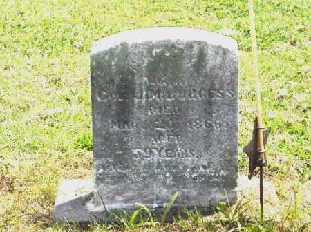 BURGESS, NANCY - Meigs County, Ohio   NANCY BURGESS - Ohio Gravestone Photos