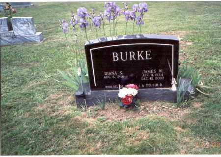 BURKE, JAMES W. - Meigs County, Ohio   JAMES W. BURKE - Ohio Gravestone Photos