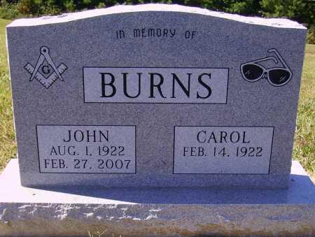 BURNS, CAROL - Meigs County, Ohio | CAROL BURNS - Ohio Gravestone Photos