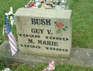 BUSH, GUY V. - Meigs County, Ohio   GUY V. BUSH - Ohio Gravestone Photos
