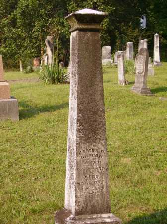 CAHOON, JAMES D. MONUMENT - Meigs County, Ohio | JAMES D. MONUMENT CAHOON - Ohio Gravestone Photos