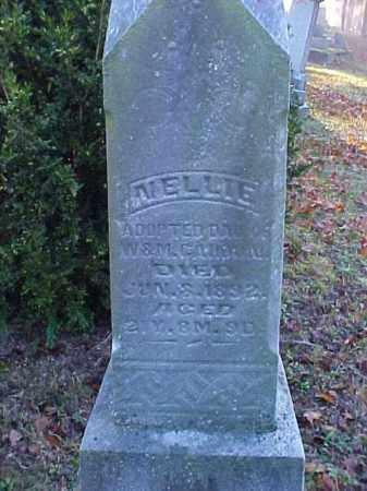 CAHOON, NELLIE - Meigs County, Ohio | NELLIE CAHOON - Ohio Gravestone Photos