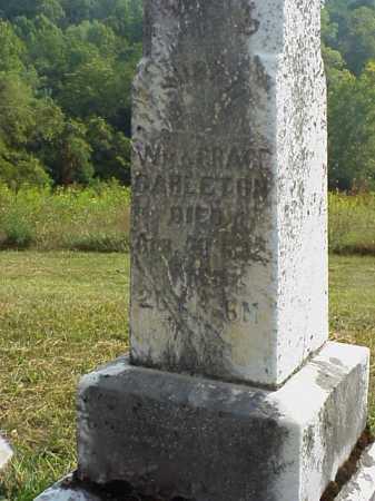 CARLETON, SUSAN - Meigs County, Ohio | SUSAN CARLETON - Ohio Gravestone Photos