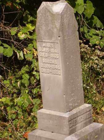 CARMICHAEL, MARY - Meigs County, Ohio | MARY CARMICHAEL - Ohio Gravestone Photos