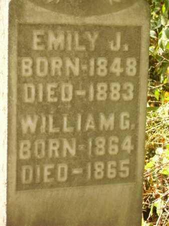 CARMICHAEL, WILLIAM G. - Meigs County, Ohio | WILLIAM G. CARMICHAEL - Ohio Gravestone Photos