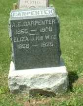 CARPENTER, A. E. - Meigs County, Ohio | A. E. CARPENTER - Ohio Gravestone Photos