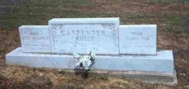 CARPENTER, NIMROD NEY - Meigs County, Ohio | NIMROD NEY CARPENTER - Ohio Gravestone Photos