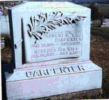 CARPENTER, ROBERT S. - Meigs County, Ohio | ROBERT S. CARPENTER - Ohio Gravestone Photos