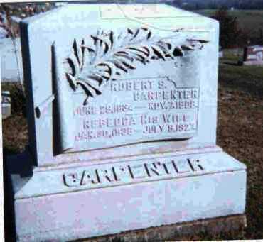 DAILEY CARPENTER, REBECCA - Meigs County, Ohio | REBECCA DAILEY CARPENTER - Ohio Gravestone Photos