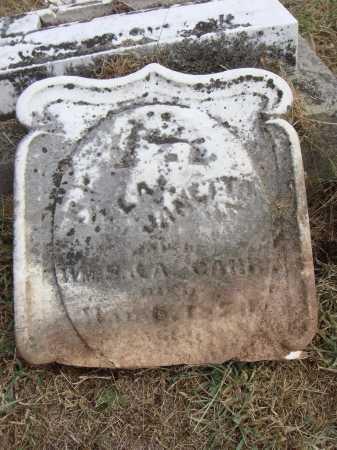 CARR, ZILLA JANETTA - Meigs County, Ohio | ZILLA JANETTA CARR - Ohio Gravestone Photos