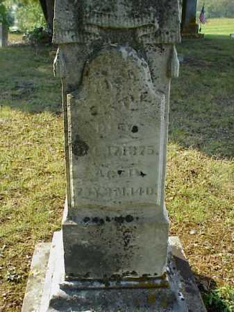 CASTLE, JUNIA - Meigs County, Ohio   JUNIA CASTLE - Ohio Gravestone Photos