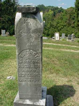 CASTOR, E. E. - Meigs County, Ohio   E. E. CASTOR - Ohio Gravestone Photos