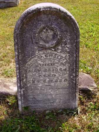 CHALFAN, SAMUEL D. - Meigs County, Ohio | SAMUEL D. CHALFAN - Ohio Gravestone Photos