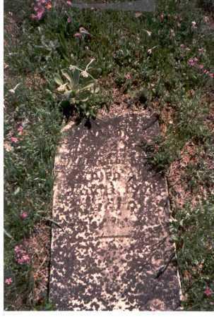 CHAMBERLAIN, AARON - Meigs County, Ohio   AARON CHAMBERLAIN - Ohio Gravestone Photos