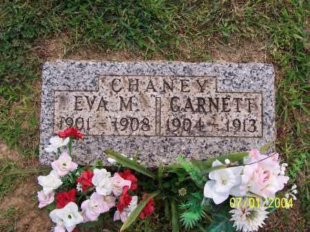 CHANEY, EVA M. - Meigs County, Ohio | EVA M. CHANEY - Ohio Gravestone Photos