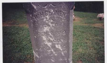 CHANEY, W.H. - Meigs County, Ohio | W.H. CHANEY - Ohio Gravestone Photos