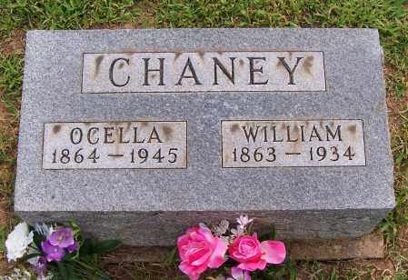 CHANEY, OCELLA - Meigs County, Ohio | OCELLA CHANEY - Ohio Gravestone Photos