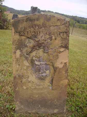 CHAPIN, BENJAMIN - Meigs County, Ohio | BENJAMIN CHAPIN - Ohio Gravestone Photos