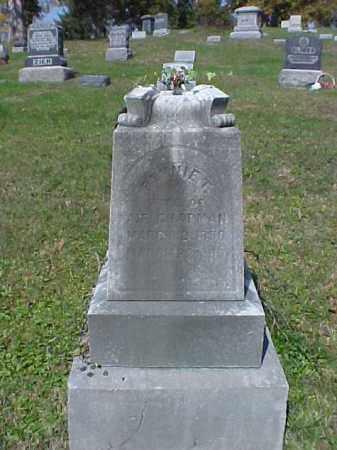 CHAPMAN, FANNIE T. - Meigs County, Ohio | FANNIE T. CHAPMAN - Ohio Gravestone Photos
