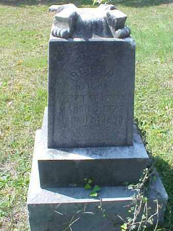 MOREDOCK CHAPMAN, IRENE H. - Meigs County, Ohio | IRENE H. MOREDOCK CHAPMAN - Ohio Gravestone Photos