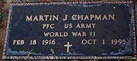 CHAPMAN, MARTIN J. - Meigs County, Ohio   MARTIN J. CHAPMAN - Ohio Gravestone Photos