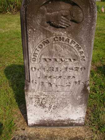 CHAPMAN, ORTON - Meigs County, Ohio   ORTON CHAPMAN - Ohio Gravestone Photos