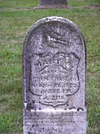 BLAKE CHASE, MARY S. - Meigs County, Ohio | MARY S. BLAKE CHASE - Ohio Gravestone Photos