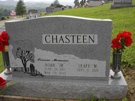 CHASTEEN, NOAH JR. - Meigs County, Ohio   NOAH JR. CHASTEEN - Ohio Gravestone Photos