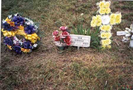 CHEADLE, REX - Meigs County, Ohio   REX CHEADLE - Ohio Gravestone Photos