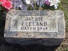 CLELAND, JACKIE - Meigs County, Ohio | JACKIE CLELAND - Ohio Gravestone Photos