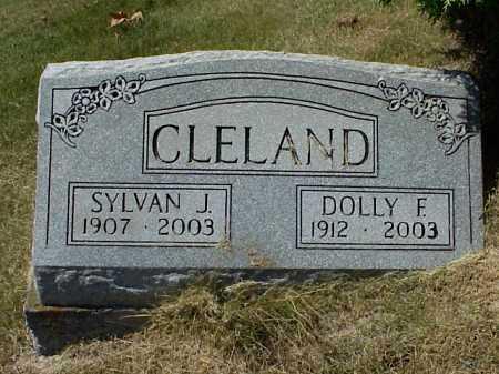 CLELAND, DOLLY F. - Meigs County, Ohio | DOLLY F. CLELAND - Ohio Gravestone Photos