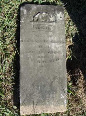 CLINE, ASA - OVERALL VIEW - Meigs County, Ohio | ASA - OVERALL VIEW CLINE - Ohio Gravestone Photos