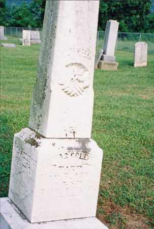 COLEMAN, THOMAS - Meigs County, Ohio | THOMAS COLEMAN - Ohio Gravestone Photos