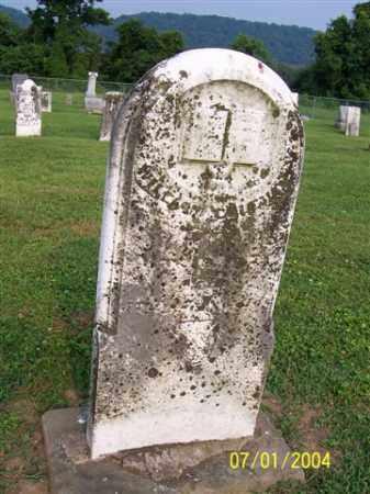 COLEMAN, WILLIAM - Meigs County, Ohio | WILLIAM COLEMAN - Ohio Gravestone Photos