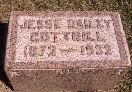 COTTRILL, JESSE DAILEY - Meigs County, Ohio | JESSE DAILEY COTTRILL - Ohio Gravestone Photos