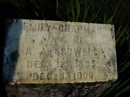 CHAPMAN CROWELL, EMILY - Meigs County, Ohio | EMILY CHAPMAN CROWELL - Ohio Gravestone Photos