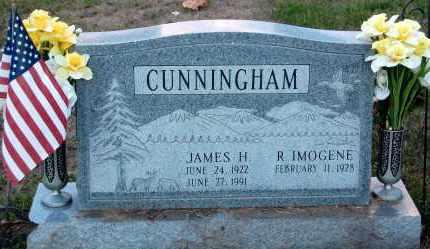 CUNNINGHAM, JAMES H. - Meigs County, Ohio | JAMES H. CUNNINGHAM - Ohio Gravestone Photos