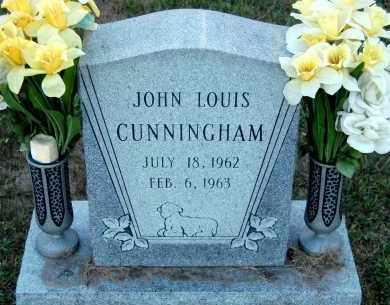 CUNNINGHAM, JOHN LOUIS - Meigs County, Ohio | JOHN LOUIS CUNNINGHAM - Ohio Gravestone Photos